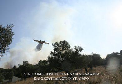 Ανακοίνωση για την αποφυγή  αγροτοδασικών πυρκαγιών.