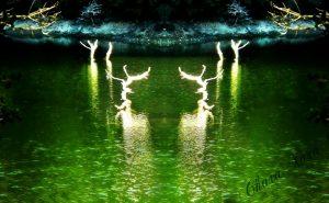 Η μαγεία της φύσης με το φως που λάμπει…