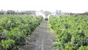 Επιθεώρηση ψεκαστικών συγκροτημάτων με μέσο εφαρμογής τον αυλό που δυναμοδοτούνται από ελκυστήρα ή άλλο αγροτικό μηχάνημα.