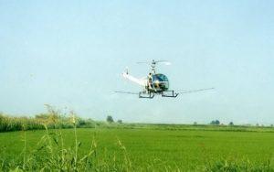 Πιλότος για τη χώρα το πρόγραμμα κωνωποκτονίας της Περιφέρειας Πελοποννήσου.