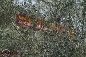 """Κλειστό και μες στην """"εγκατάλειψη"""" το Ιερό Ορθίας Αρτέμιδος Σπάρτης."""
