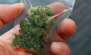 Σύλληψη 25 χρόνου στην Σπάρτη για κατοχή ναρκωτικών.