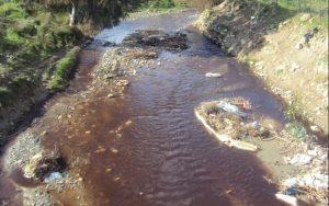 """Οικολογικός Σύνδεσμος Λακωνίας """"Ναι στα μικρά ελαιοτριβεία αλλά Όχι στην μόλυνση του περιβάλλοντος"""""""
