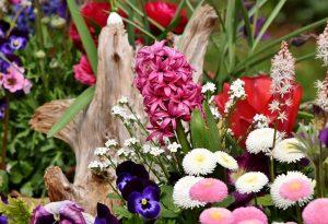 «Γιορτή Λουλουδιών» στο Γύθειο για 6η συνεχόμενη χρονιά!