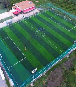 Φιλικοί αγώνες της ποδοσφαιρικής ακαδημίας Σπάρτης.