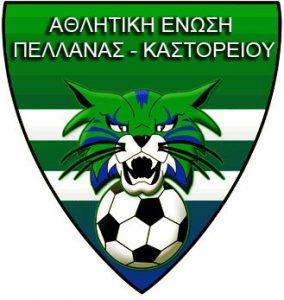 Βράβευση της ποδοσφαιρικής ομάδας ΑΕ Πελλάνας Καστορείου.