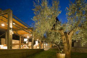 Στέλιος Χατζηκαλέας Quintet «Ο αφρός των ημερών»  στο Μουσείο Ελιάς και Ελληνικού Λαδιού