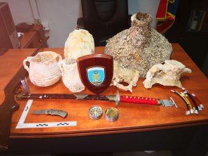 Κάλυμνος.Κατάσχεση όπλων , εκρηκτικών μηχανισμών, ναρκωτικών ουσιών και αρχαίων κινητών μνημείων.