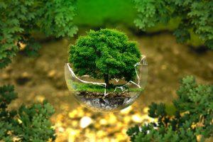 Προβολή της ταινίας – ντοκιμαντέρ «The 11th Hour» στο πλαίσιο της Παγκόσμιας Ημέρας Περιβάλλοντος