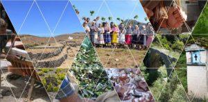 1ο Θερινό Σχολείο με θέμα «Ο Αγροτικός Χώρος ως Πολιτιστική Κληρονομιά»  Δημητσάνα (28 Ιουλίου-5 Αυγούστου 2018)
