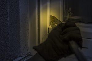 Λακωνία. Εξιχνιάστηκε μία περίπτωση κλοπής – Σύλληψη 26χρονου για κατοχή κάνναβης