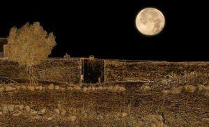 «Η σονάτα του σεληνόφωτος»  στο Μουσείο Ελιάς και Ελληνικού Λαδιού Σπάρτης.