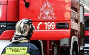 Πυρκαγιά από αμέλεια στην περιοχή της Μάνης.