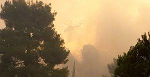 Πολύ υψηλός κίνδυνος πυρκαγιάς κατ. 4 σε Μεσσηνία & Λακωνία για 4-9-2018.
