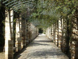 Σαν σήμερα 9 Σεπτεμβρίου – ανακοινώνεται πως ο Βασιλικός Κήπος (Εθνικός Κήπος) στην Αθήνα θα αποδοθεί στη χρήση του κοινού