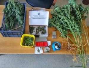 Συλλήψεις για ναρκωτικά στην Αργολίδα και για πλαστογραφία στον Κρατικό Αερολιμένα Καλαμάτας