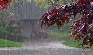 Βροχές & καταιγίδες για την Κυριακή 18-11-2018