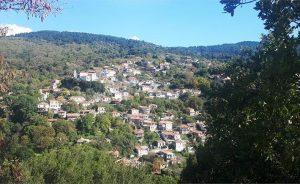 Στήριγμα της ανάπτυξης στο χωριό Βαμβακού το Ίδρυμα Σ. Νιάρχος