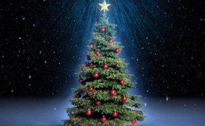 Γνωρίζετε γιατί στολίζουμε Χριστουγεννιάτικο δένδρο & τι συμβολίζει ;