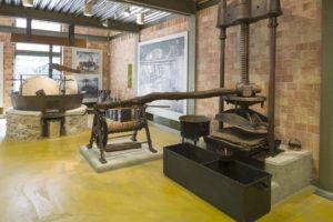 «Ελιά και ελαιόλαδο: επιστήμη & σχολική επιχειρηματικότητα» Μουσείο Ελιάς & Ελληνικού Λαδιού