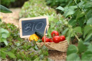 Μετατίθεται για τις 28 Φεβρουαρίου  η υποβολή «Βιολογικές Καλλιέργειες»