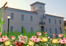Για 7η συνεχόμενη χρονιά η «Γιορτή Λουλουδιών» στο Γύθειο