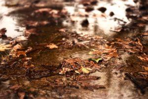 Τοπικές βροχές με βαθμιαία βελτίωση θα έχουμε τη Δευτέρα 11.11.2019