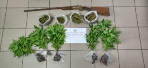 Εκτεταμένη αστυνομική επιχείρηση στην Πελοπόννησο , βεβαιώθηκαν 256 παραβάσεις