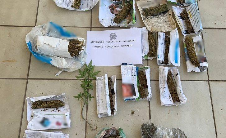 Συνελήφθη 68χρονος στη Λακωνία