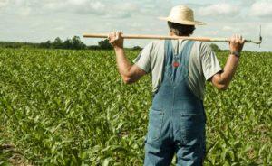Ιδρύεται το Ταμείο Εγγυήσεων Αγροτικής Ανάπτυξης