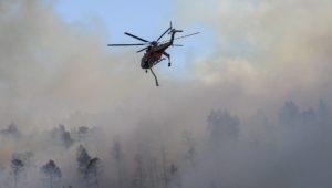 Υπό μερικό έλεγχο η πυρκαγιά στο Δαφνί Λακωνίας
