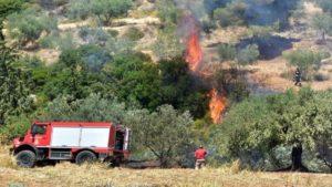 Φωτιά στη Σαλαμίνα, προληπτική εκκένωση σπιτιών