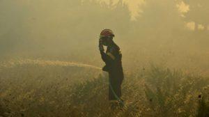 Σύσκεψη στην Π.Ε Λακωνίας για τον μηχανισμό δασοπυρόσβεσης