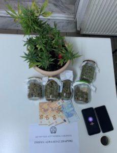 Συνελήφθη ένα άτομο για ποσότητα κάνναβης  στη Λακωνία