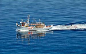 Ανακοίνωση για την ανανέωση επαγγελματικών σκαφών αλιείας Π. Λακωνίας