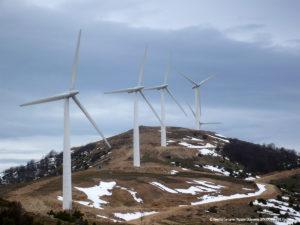Καταγγελία στην ΕΕ για τα αιολικά πάρκα σε περιοχές Natura 2000