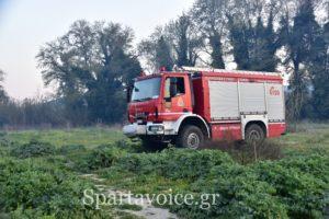 Πυρκαγιά σε αγροτοδασική έκταση στον Δ. Ευρώτα Λακωνίας