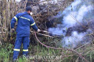 Υψηλός κίνδυνος πυρκαγιάς για την Κυριακή 23.8.2020