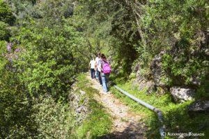 Trekking SPARTA για την επόμενη μέρα της πανδημίας