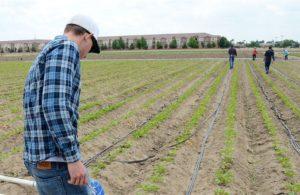 """«Και άλλο """"μέτρο στήριξης"""" των αγροτών: αύξηση των ασφαλίστρων του ΕΛΓΑ!»"""