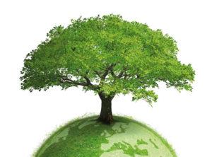 Ενστάσεις και αντιρρήσεις για το νέο περιβαλλοντικό νόμο
