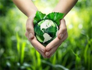 """Το """"πράσινο μήνυμα"""" για την Παγκόσμια Ημέρα Περιβάλλοντος των Γεωπόνων"""