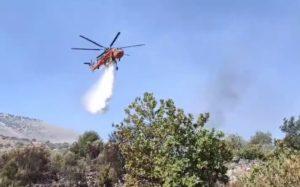 Ολοκληρώθηκε ο απολογισμός των ζημιών από την πυρκαγιά στην Μάνη