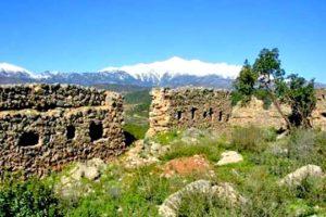Κάστρο Τάραψας / Βασιλακίου ή Πύργος Ζαλούμη