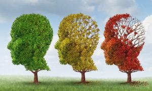 Νεοκλής Κρητικός : Παγκόσμια Ημέρα Νόσου Αλτσχάιμερ-Στόχος ένα Κέντρο Ημέρας Αλτσχάιμερ στην Λακωνίας