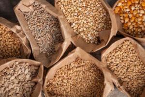 ΔΑΟΚ Λακωνίας – Ενημέρωση υπόπτων δεμάτων με σπόρους σε ιδιώτες από τρίτες χώρες