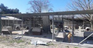 Συνεχίζονται οι εργασίες στον χώρο φιλοξενίας αδέσποτων ζώων συντροφιάς Δ. Σπάρτης