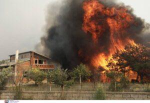 Εικόνες καταστροφής στα Γεράνεια Ορη, πάνω από 20.000 στρέμματα δάσους καμένα από την μεγάλη πυρκαγιά στην Κορινθία