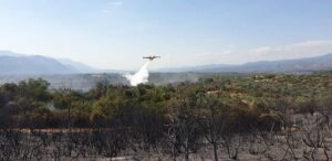 Υπό έλεγχο η πυρκαγιά σε δασική περιοχή της Ποταμιάς Δήμου Σπάρτης