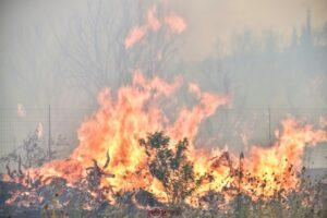 Συνδρομή της ΕΛ.ΑΣ στην αντιμετώπιση χθεσινών πυρκαγιών σε Αττική, Εύβοια, Μεσσηνία και Λακωνία.